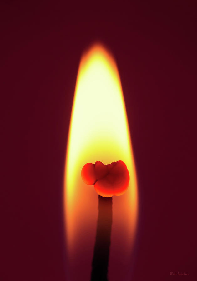 Candle Photograph - Candle Flame Macro by Wim Lanclus
