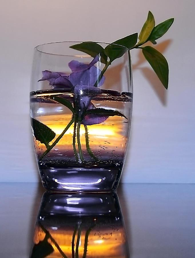 Flower Photograph - Candle Light by Svetlana Sewell