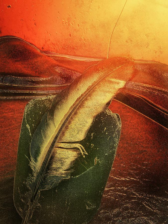 Candle Photograph - Candled Feather by Eddie G