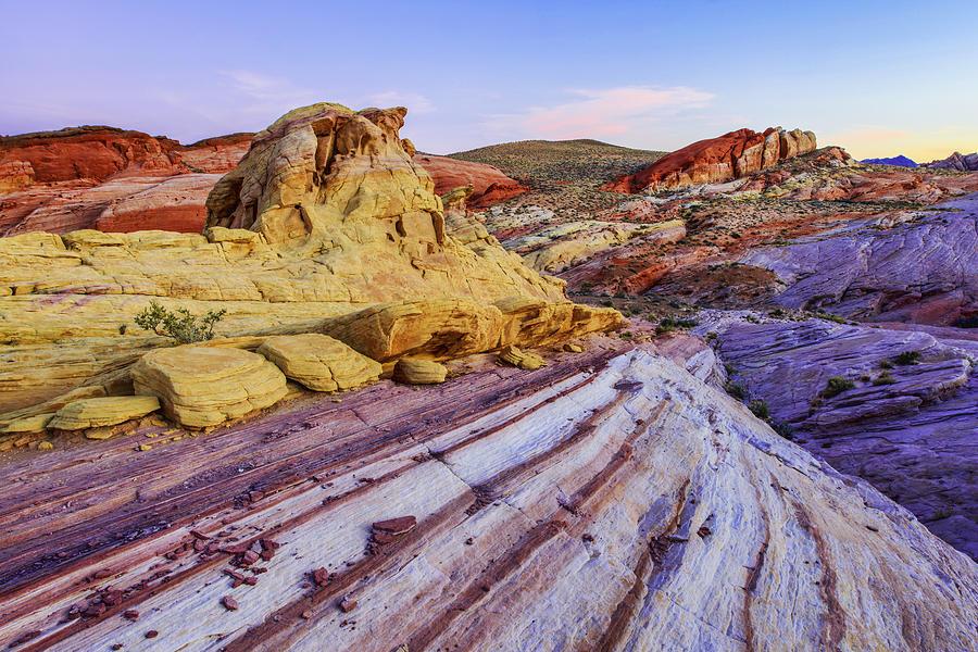 Desert Photograph - Candy Cane Desert by Chad Dutson