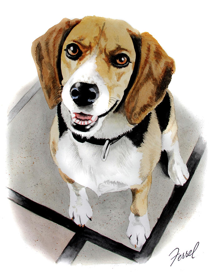 Dog Painting - Canine Cutie by Ferrel Cordle