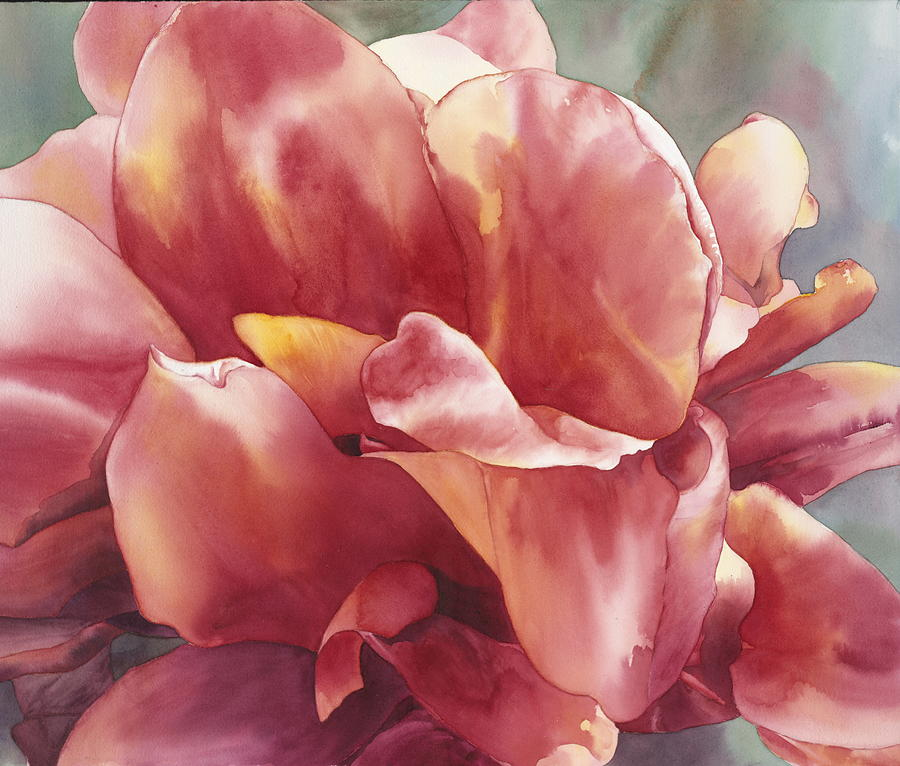 Watercolor Painting - Canna by Ariel Freeman