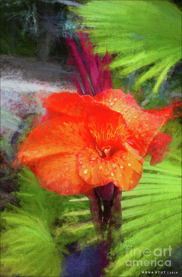 Orange Red Canna Lily Mixed Media