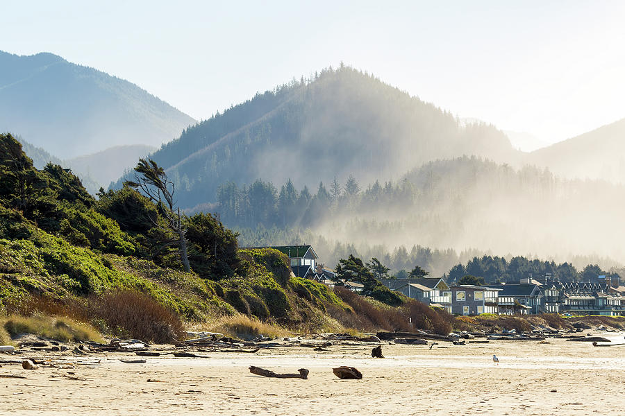 Cannon Beach Photograph - Cannon Beach Oceanfront Vacation Homes by David Gn