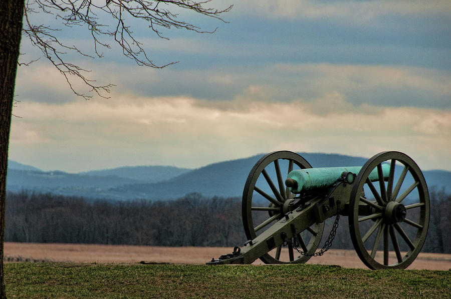 Cannon Photograph - Cannon by David Arment