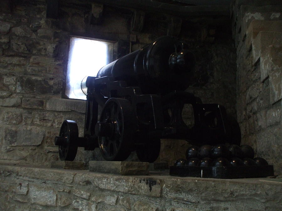 Cannon Photograph - Cannon by Lisa Collinsworth