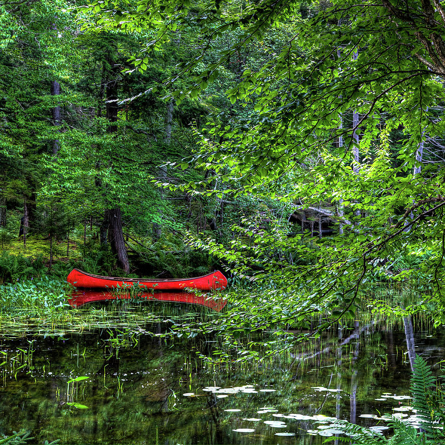 Canoe On The Shore Photograph by David Patterson
