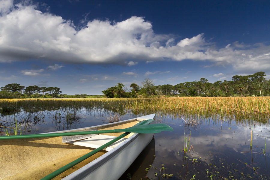 Boats Photograph - Canoeing In The Everglades by Debra and Dave Vanderlaan