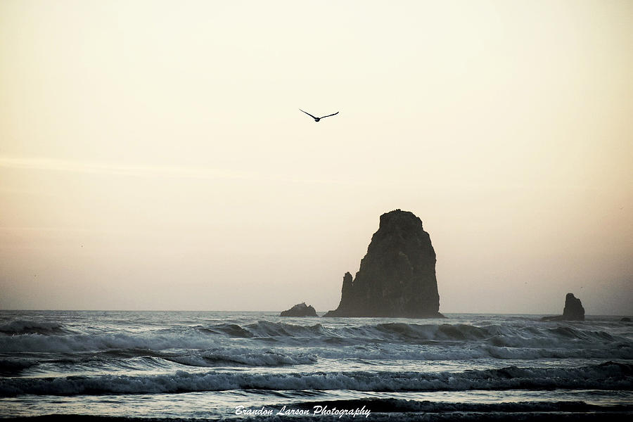 Cannon Beach Photograph by Brandon Larson