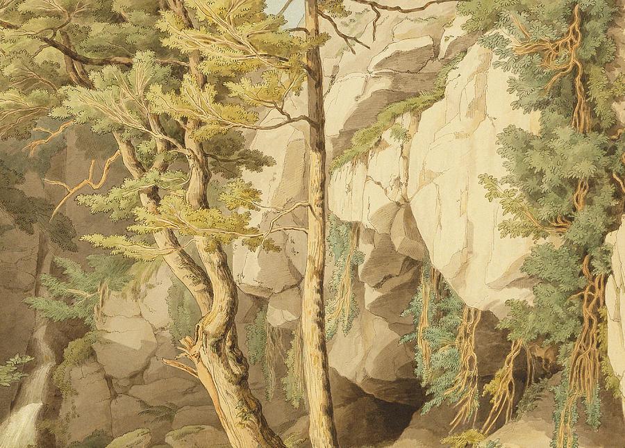Woods Painting - Canonteign  Devon by John White Abbott
