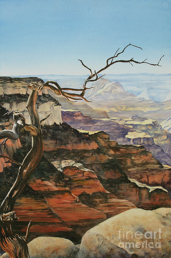 Canyon View by Glenyse Henschel