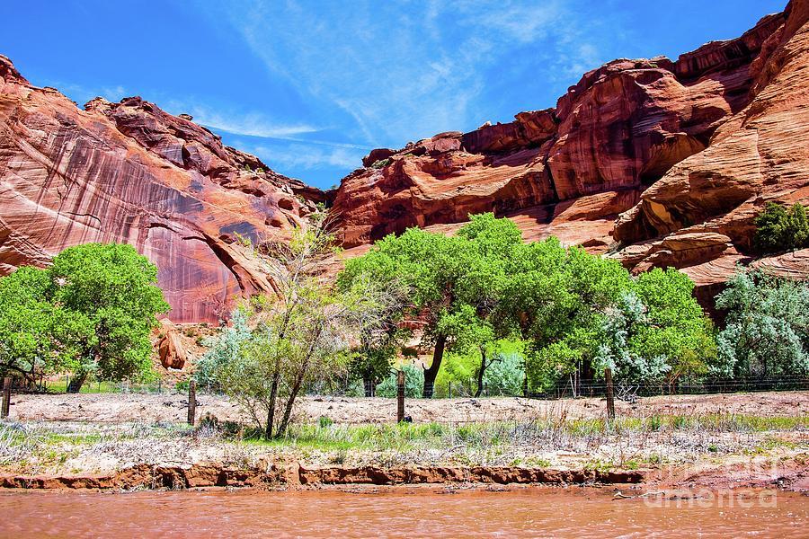 Arizona Photograph - Canyon Wall. by Michael Farndell