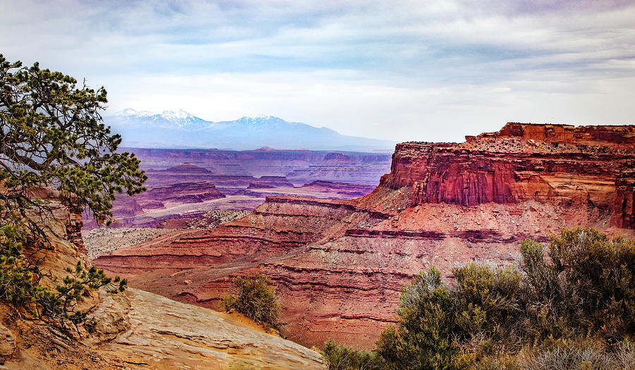 Canyonlands National Park by James Woody