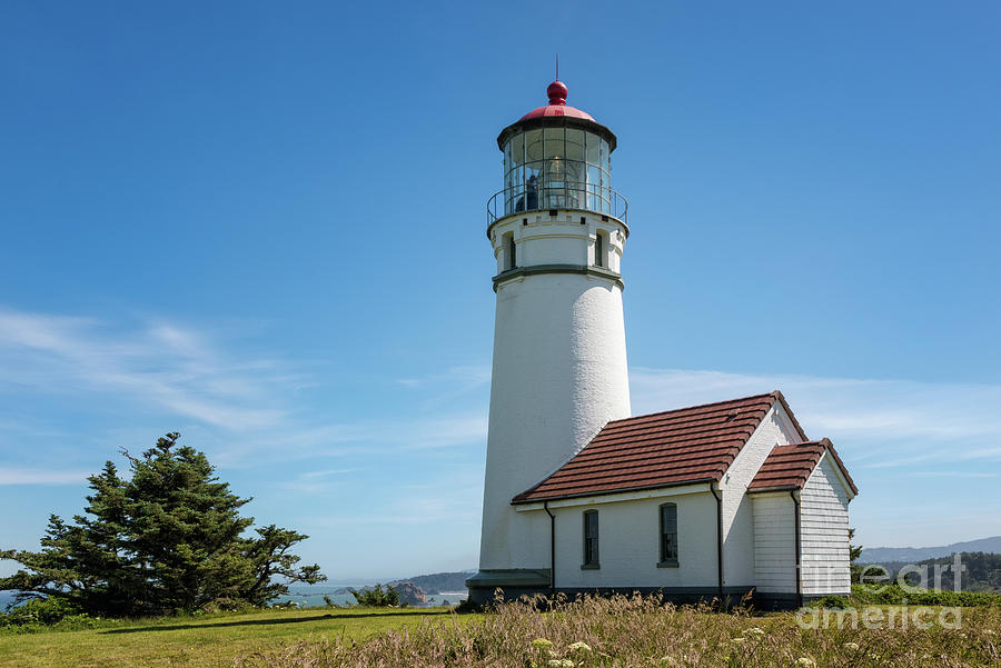 Cape Blanco Lighthouse 2 by Al Andersen