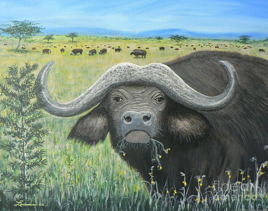 Cape Buffalo Painting - Cape Buffalo by Don Lindemann