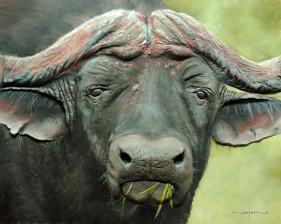 Painting Painting - Cape Buffalo by Nolan Clark