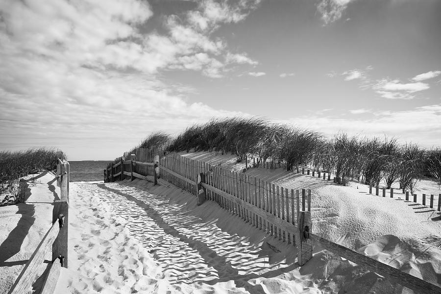 Black And White Photograph - Cape Cod Beach Entry by Mircea Costina Photography