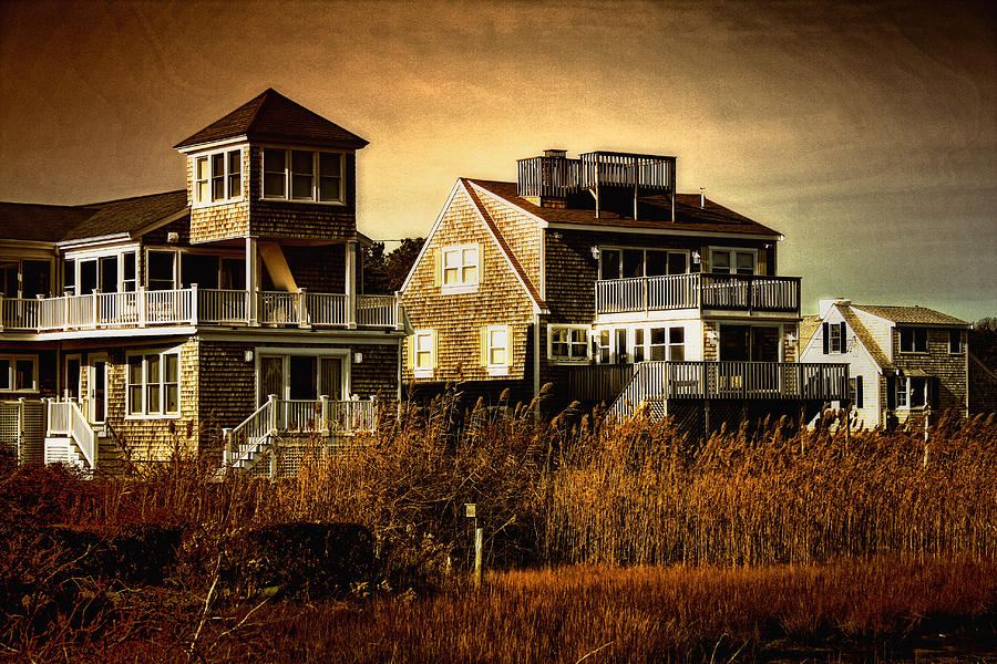 Cape Cod Photograph - Cape Cod Gold by Gina Cormier