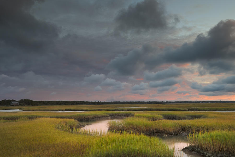 Cape Cod Marsh Photograph By Betty Wiley