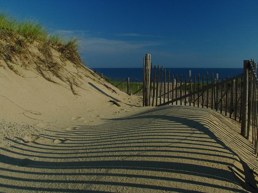 Cape Cod Beaches Photograph - Cape Cod National Seashore by Juergen Roth