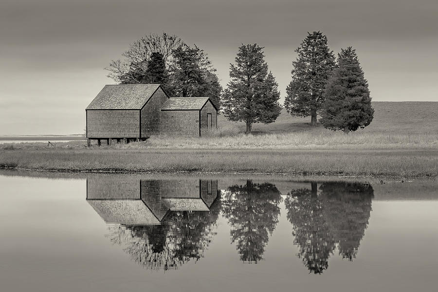 Cape Cod Reflections Black and White Photography by Dapixara Art