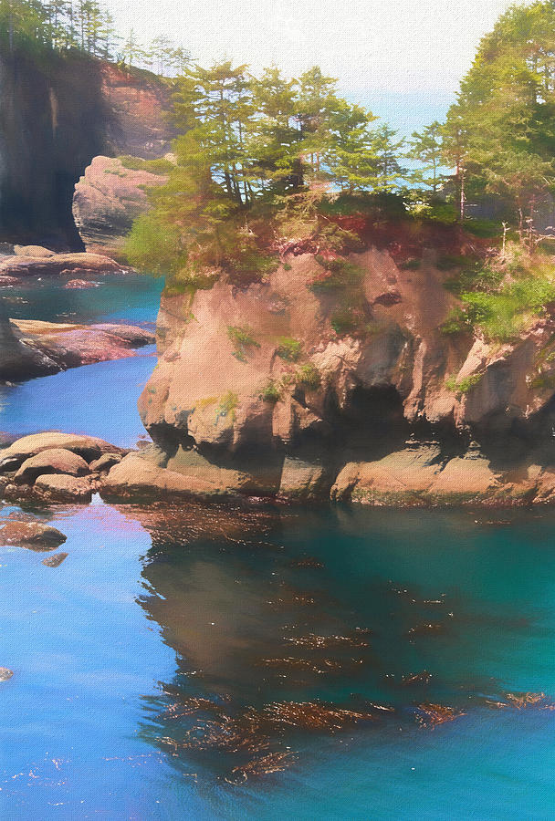 Cape Flattery Photograph - Cape Flattery Reflection by Dan Sproul