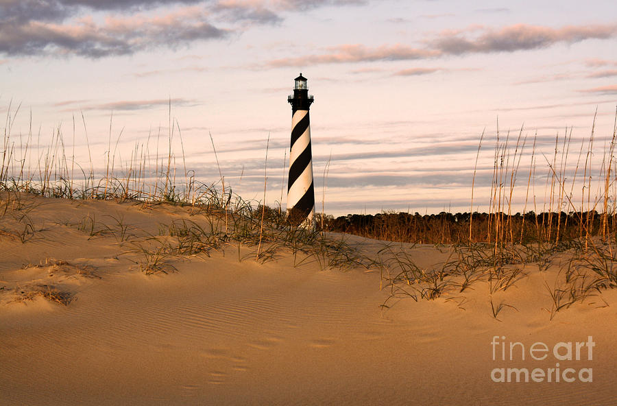 Lighthouse Photograph - Cape Hatteras Lighthouse by Tony Cooper
