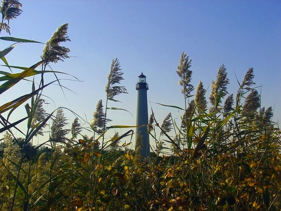 Autumn Photograph - Cape May Light Autumn by Kevin  Sherf