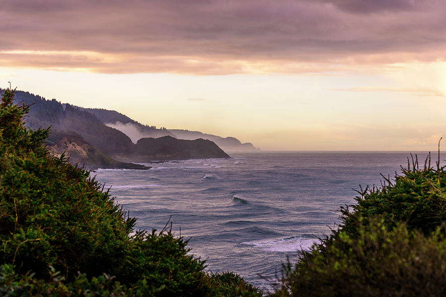 Cape Perpetua, Oregon coast by Bryan Xavier