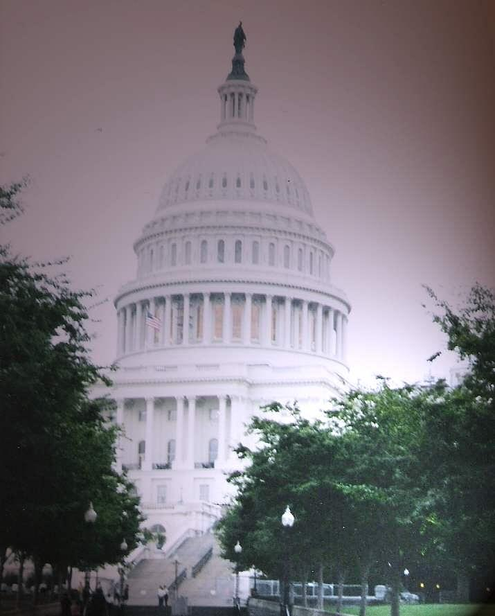 Capitol Photograph - Capitol In Pink by Pharris Art