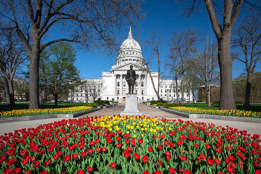 Tulips Photograph - Capitol Tulips by Todd Klassy