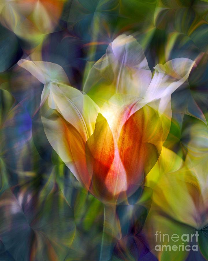 Floral Photograph - Capturing the Sun by Chuck Brittenham