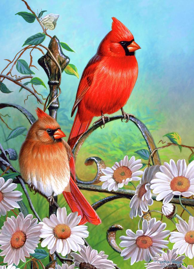 larry bird iphone wallpaper