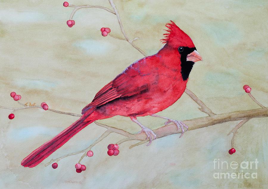 Cardinal Painting - Cardinal II by Laurel Best