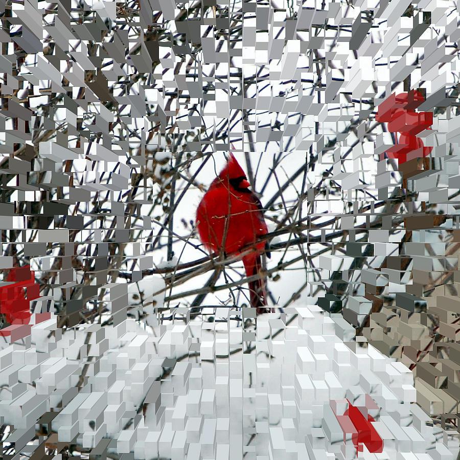 Birds Photograph - Cardinal by Lisa Kane
