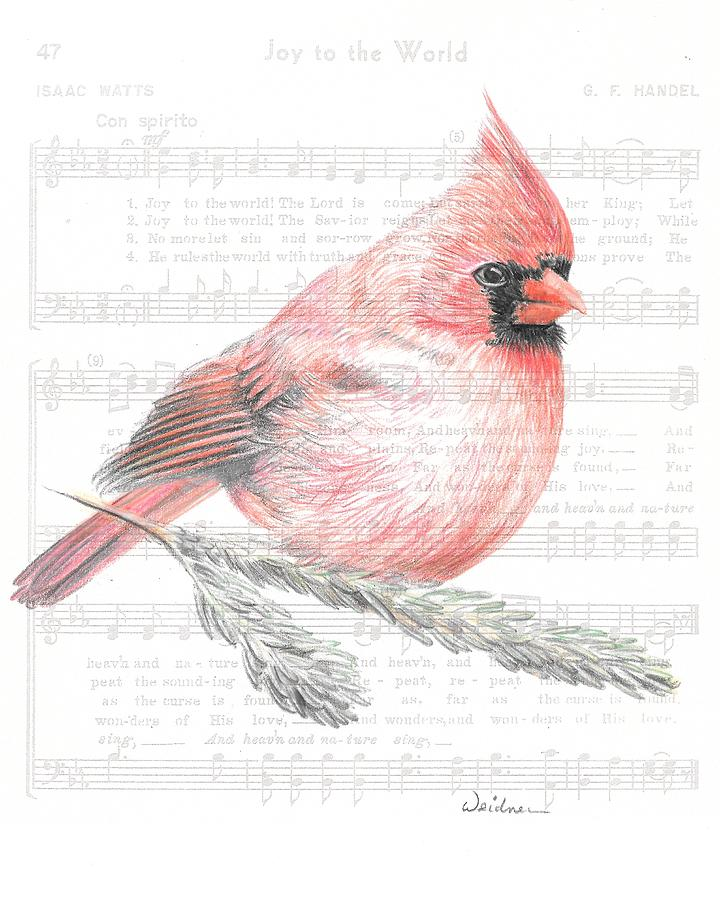 Bird Drawing - Cardinal On Joy To The World by Kathy Weidner