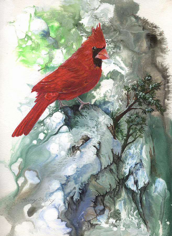 Bird Painting - Cardinal by Sherry Shipley