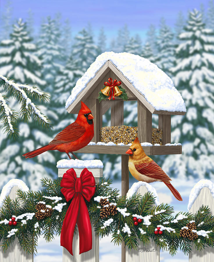 Bird Digital Art - Cardinals Christmas Feast by Crista Forest