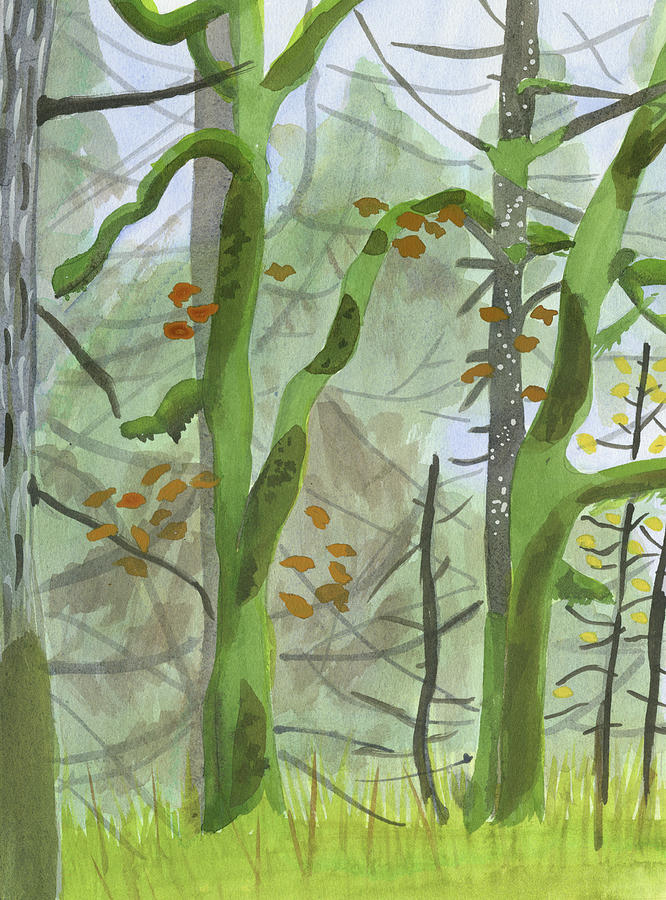 Forest Painting - Cardwell Hill Forest by Alexandra Schaefers