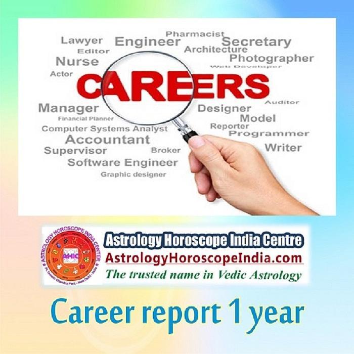 career report vedic astrology