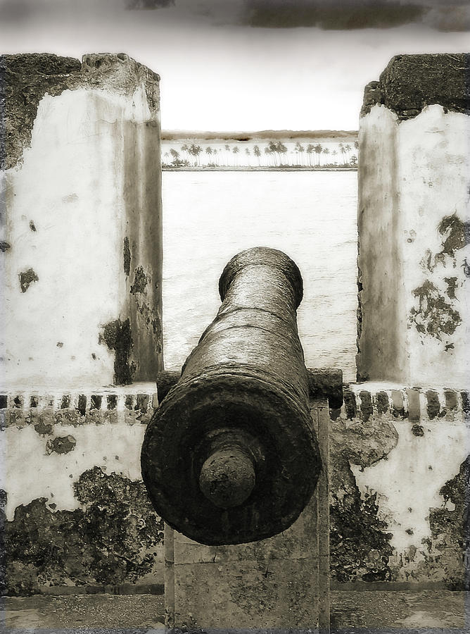 Cannon Photograph - Caribbean Cannon by Steven Sparks