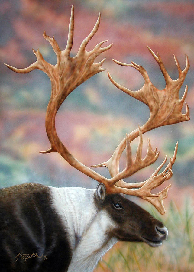 Caribou Painting - Caribou by Kathie Miller