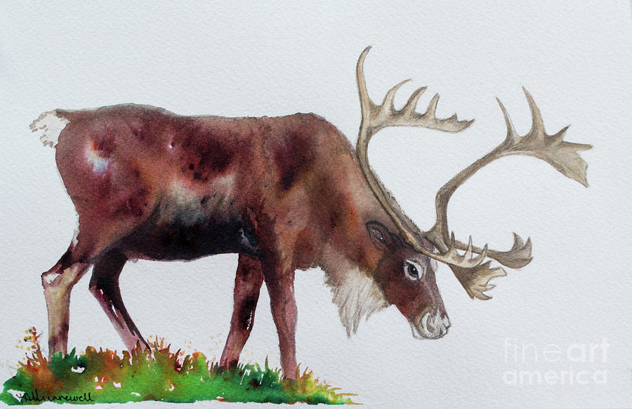 Caribou Painting