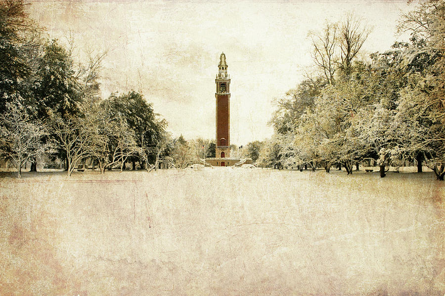 Carillon In The Snow Photograph by Guy Crittenden
