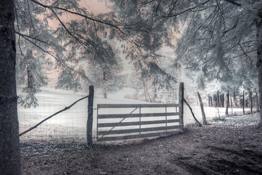 Carl Sandburg Home National Historic Site Connemara Farm by Jane Linders