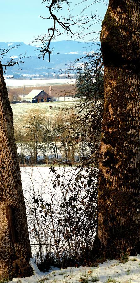 Carlton Barn Photograph