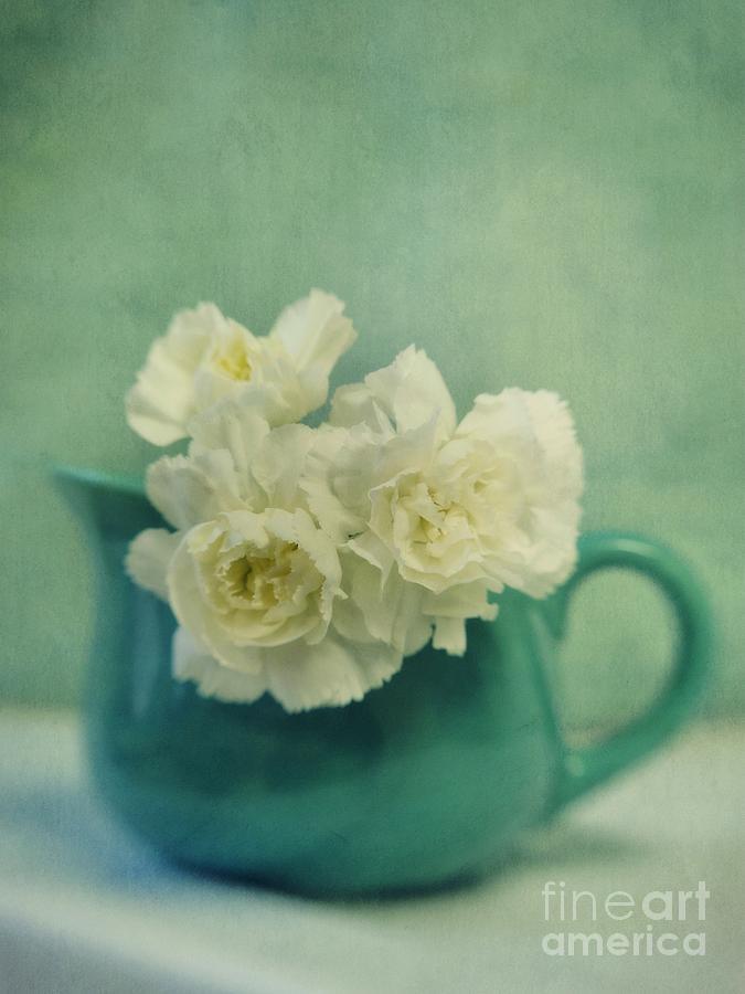 Carnation Photograph - Carnations In A Jar by Priska Wettstein