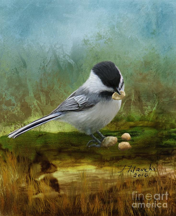 Carolina Chickadee Painting - Carolina Chickadee Feeding by Judy Filarecki