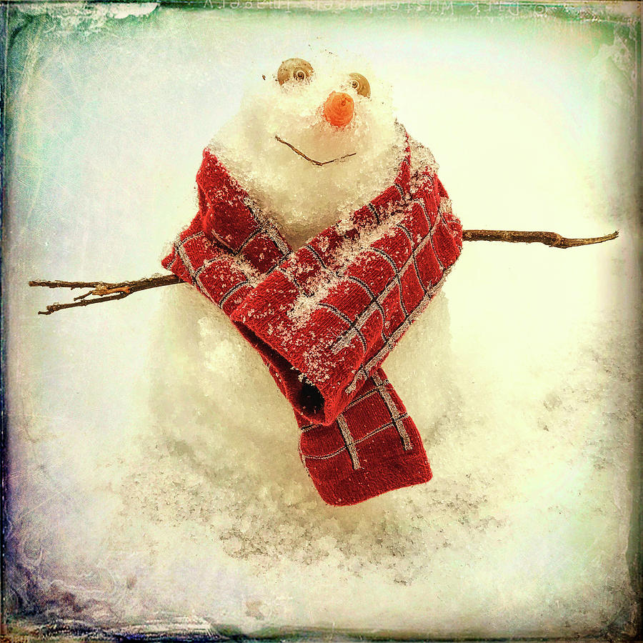 Carolina Snowman by Patricia Schaefer