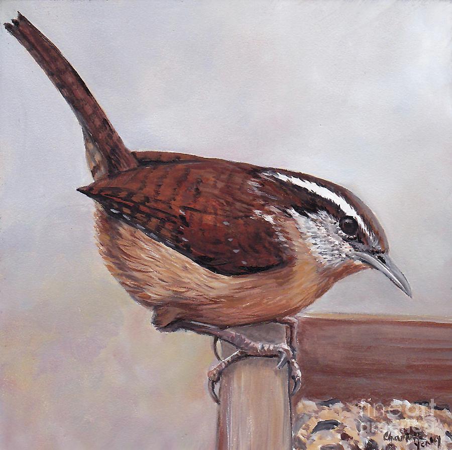 Wild Bird Painting - Carolina Wren by Charlotte Yealey